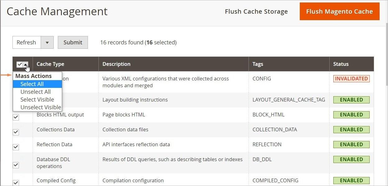 إدارة ذاكرة التخزين المؤقت (Cache Management) فى ماجنتو 2